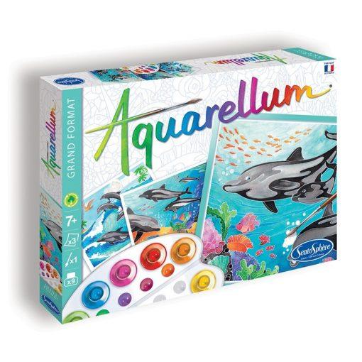 Aquarellum, delfines, nagy - Sentosphere SA6220